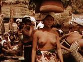 Poetoe Aloes Goesti Nude